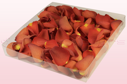 1 litre box with copper coloured freeze dried rose petals
