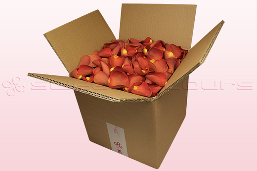 8 litre box with copper coloured freeze dried rose petals
