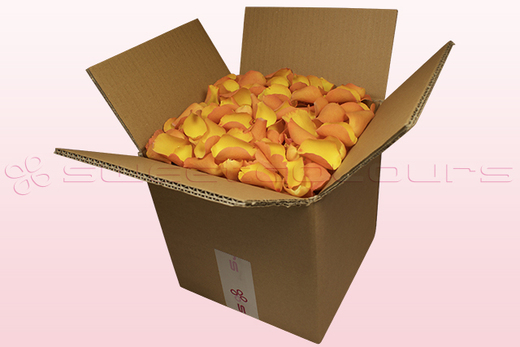 8 litre box with golden yellow freeze dried rose petals