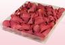 Confezione da 1 litro con petali di rosa liofilizzati di colore corallo