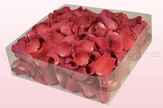 Envase de 2 litros con pétalos de rosa liofilizados de color coral