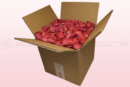 8 litre box with coral coloured freeze dried rose petals