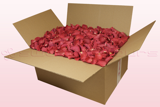 24 litre box with coral coloured freeze dried rose petals
