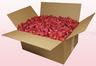 Caja de 24 litros con pétalos de rosa liofilizados de color coral