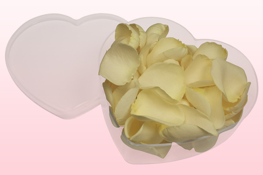 Heart Shaped Box With Cream Freeze Dried Rose Petals