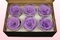 6 konservierte Rosenköpfe, Lavendel Pastell, Größe L