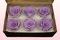6 Geconserveerde Rozenkoppen, Lavendel pastel, Maat XL