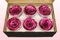 6 Preserved Rose Heads, Metallic Pink, Size XL