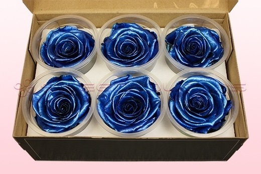 6 Preserved Rose Heads, Metallic Blue, Size XL