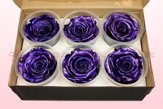 6 Têtes De Roses Conservées, Violet Métallique, Taille XL