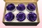 6 Preserved Rose Heads, Metallic Purple, Size XL