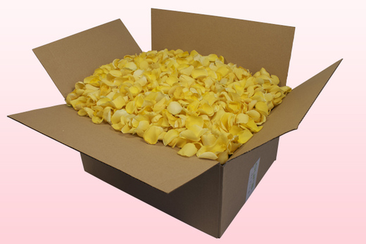 24 Litre Box With Light yellow Freeze Dried Rose Petals