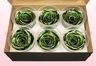 6 Têtes De Roses Conservées, Vert Métallique, Taille XL