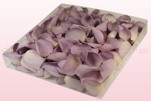 1 litre Box Lovely Lilac Freeze Dried Rose Petals