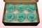 6 Geconserveerde Rozenkoppen, Turquoise, Maat L
