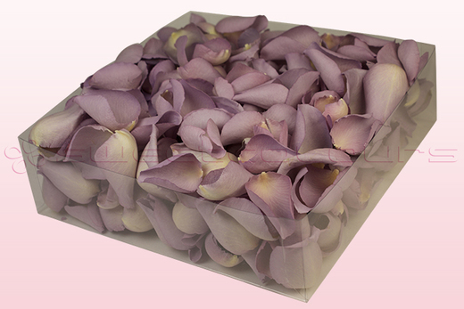 2 litre Box Lovely Lilac Freeze Dried Rose Petals