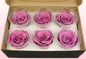 6 Preserved Rose Heads, Lavender, Size L