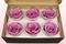 6 Geconserveerde Rozenkoppen Lavendel, Maat L