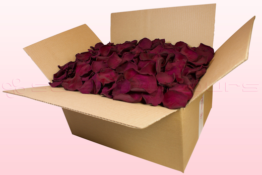 24 litre box with Wine coloured preserved rose petals