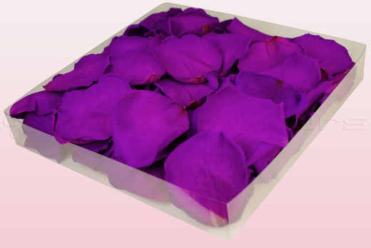1 litre box with Violet pink coloured freeze dried rose petals
