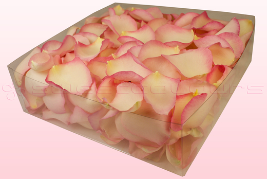 2 litre Box Vintage Pink Freeze Dried Rose Petals