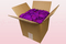 8 litre box with Violet pink coloured preserved rose petals