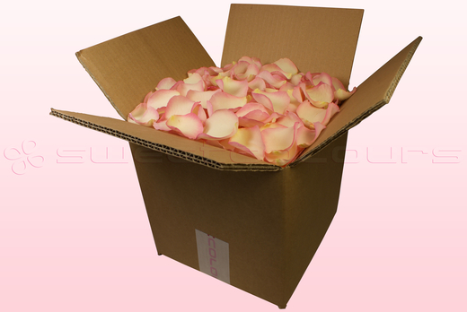 8 Litre Box Vintage Pink Freeze Dried Rose Petals