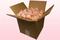 Caja de 8 litros con pétalos de rosa liofilizados de color Rosa vintage