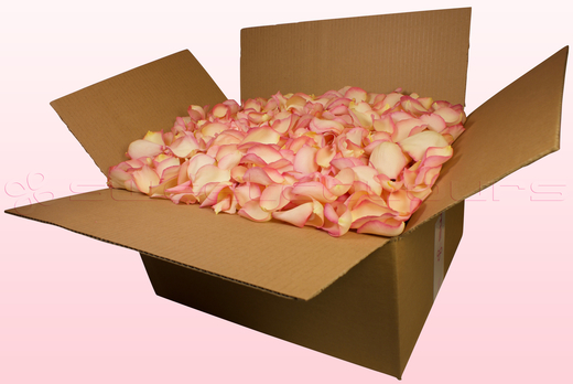 24 Litre Box Vintage Pink Freeze Dried Rose Petals