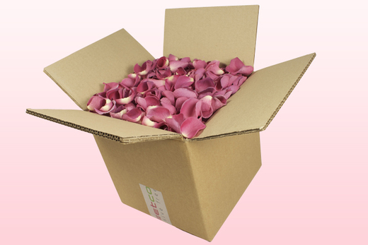 8 Litre Box Classic Pink Freeze Dried Rose Petals
