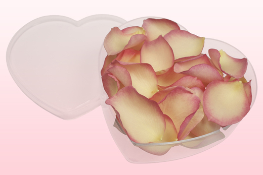 Heart Shaped Box With Vintage Pink Freeze Dried Rose Petals