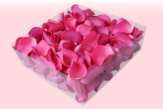 2 litre Box Hot Pink Freeze Dried Rose Petals