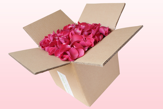 8 Litre Box Hot Pink Freeze Dried Rose Petals