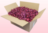24 Litre Box Hot Pink Freeze Dried Rose Petals