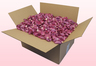 24 Litre Box Classic Pink Freeze Dried Rose Petals