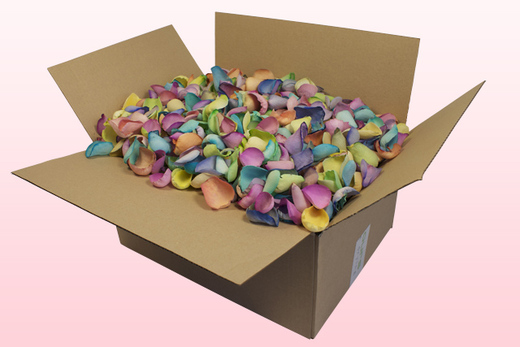 24 Litre Box Rainbow Coloured Freeze Dried Rose Petals