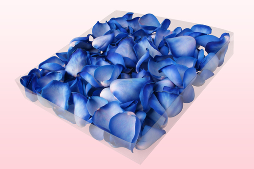 1 litre Box Sky Blue Freeze Dried Rose Petals