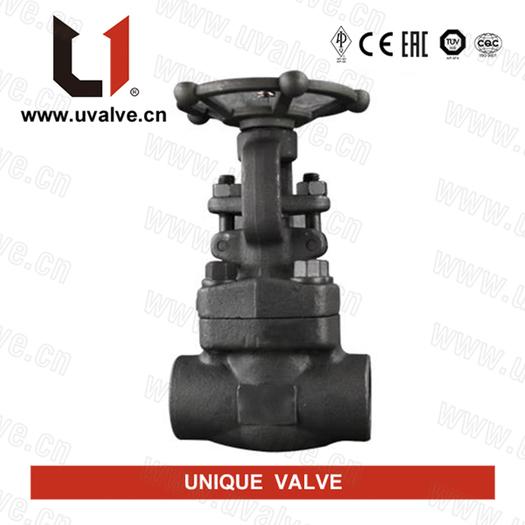 Large_forged-carbon-steel-gate-valve
