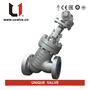 Small_y-type-globe-valve