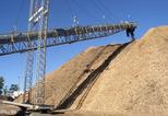 News_big_biomass-handling_-storage-and-feeding